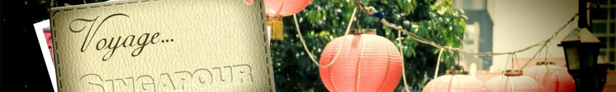 Guide voyage et de tourisme pour un séjour à Singapour réussi