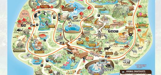 La carte du zoo de Singapour
